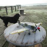 Spitfire MK 24
